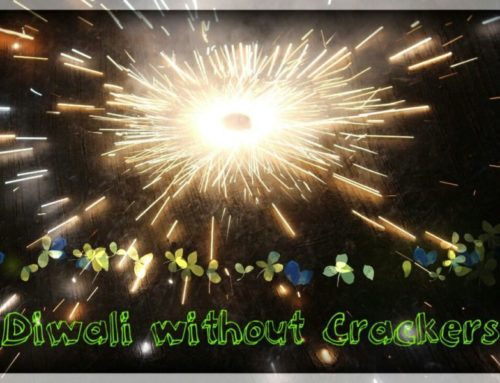 This Diwali I said No to Crackers – Why? Because I had my own reasons!