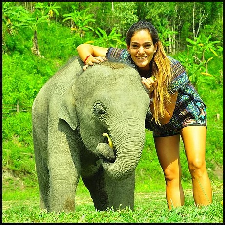 Things to do in Chiang Mai, Thailand. Elephant Jungle Sanctuary