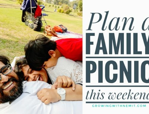 Plan a Family Picnic this weekend at Indraprastha Park, Delhi