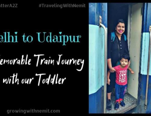 Delhi to Udaipur – A Memorable Train Journey with our Toddler