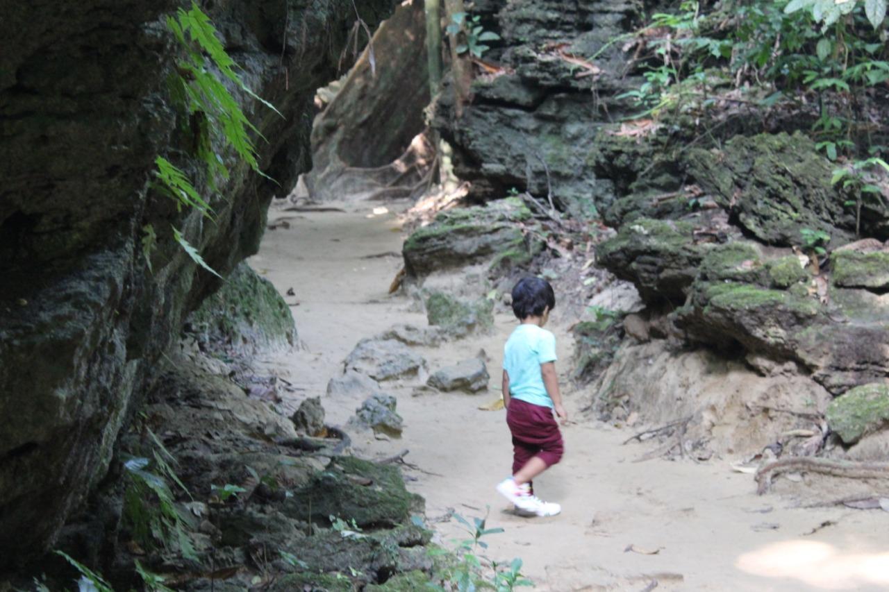 Limestone cave at Baratang Island