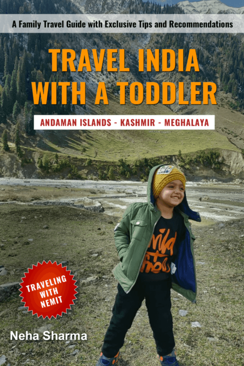 Travel India With A Toddler