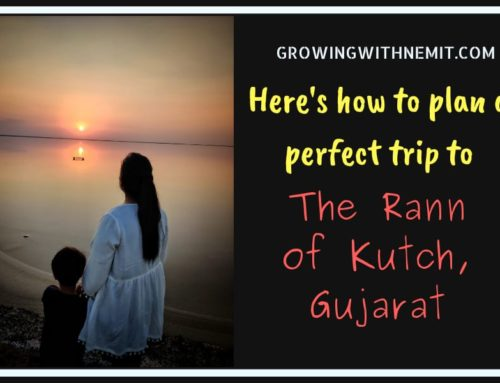 Visiting The Rann of Kutch? Here's how to plan a perfect trip to Kutch