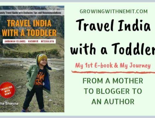 'Travel India with a Toddler' (Debut E-book) – Mother to Blogger to Author