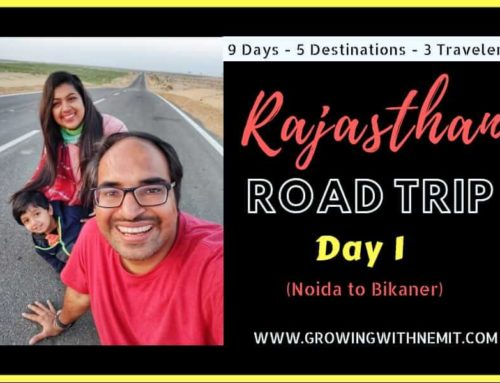 Rajasthan Road Trip Day 1 (9 Days/5 Destinations) – Traveling with a Kid
