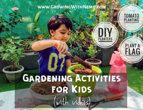 Easy & Fun Gardening Activities for Kids to do at Home
