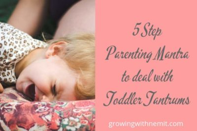 Struggling with Toddler Tantrums? Check out our 5-Step Parenting Mantra
