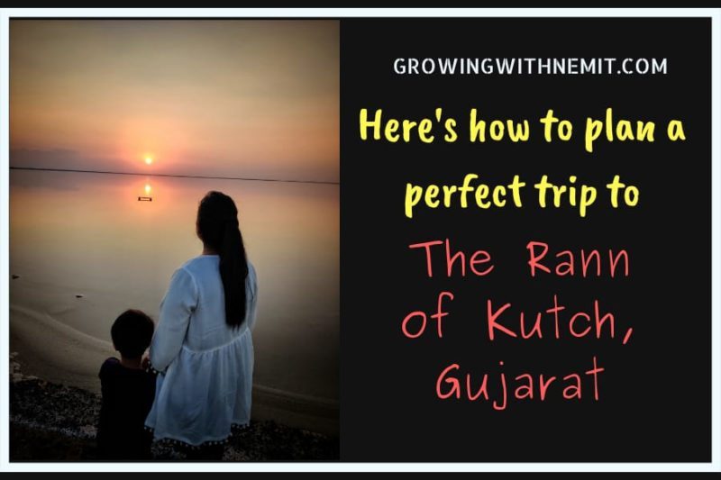 Visiting The Rann of Kutch? Here's how to plan a perfect trip