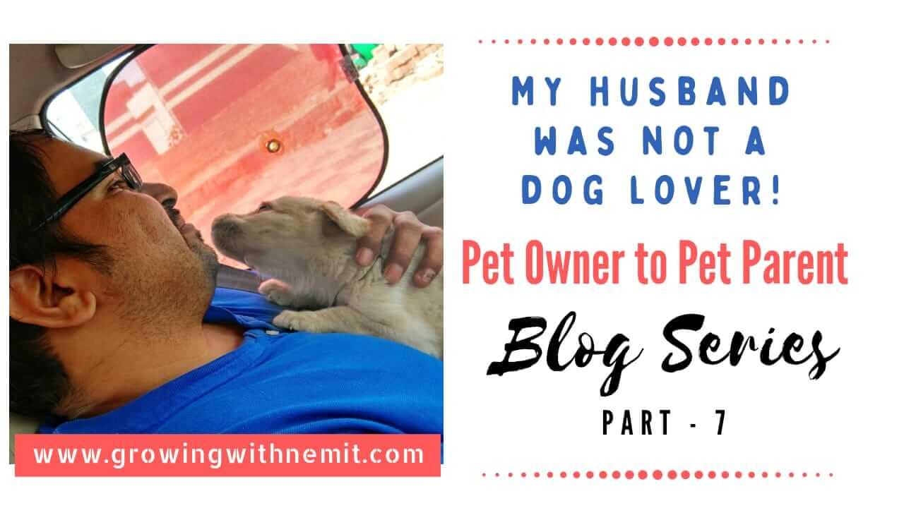 My Husband Became a Pet Parent! – Blog Series (Part – 7)