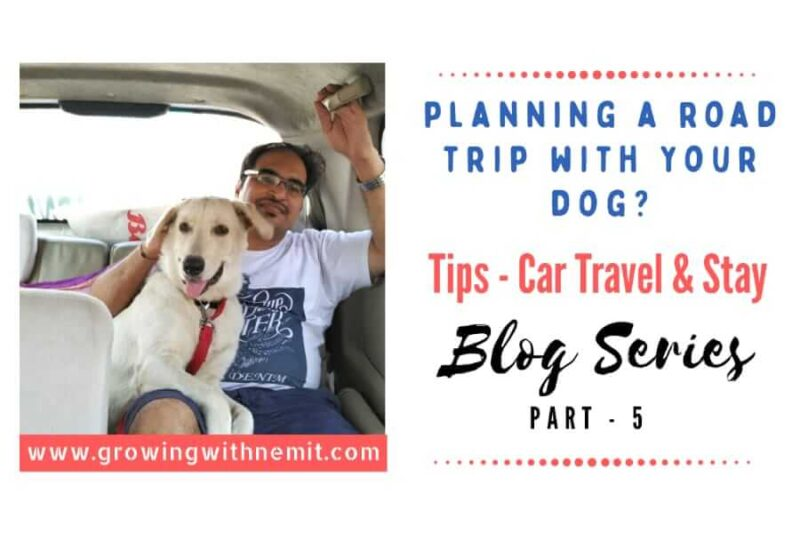 If you are planning a road trip with your dog for the first time then this post is for you. I wish someone had shared these tips with us before our trip.