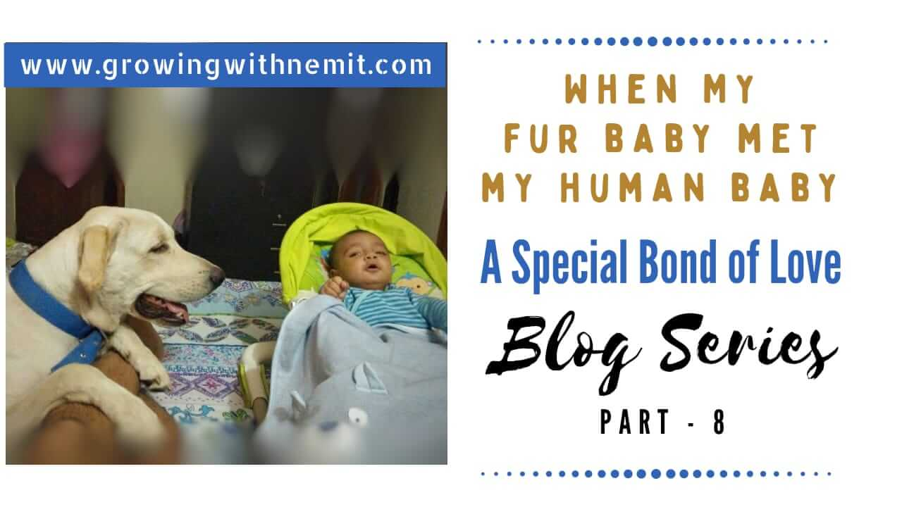 Fur Baby Meeting Human Baby | Caesar Met Nemit – Blog Series (Part – 8)